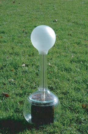 soillamp31